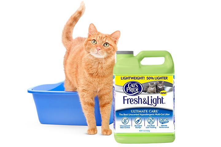 Cat Spot Litter Coupons