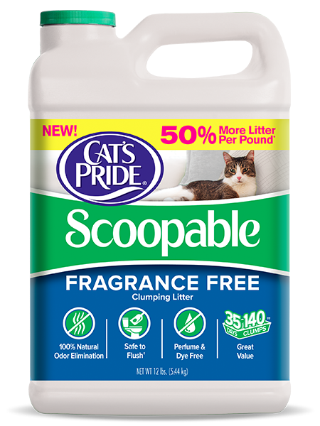 Fragrance Free Cat Litter